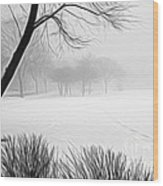 Walking Through A Winter Wonderland Wood Print