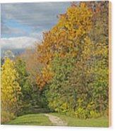 Walking Through Autumn Wood Print