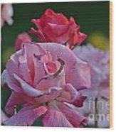 Walking Through The Rose Garden Wood Print