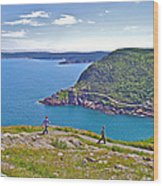 Walking Trails Everywhere In Signal Hill National Historic Site In St. John's-nl  Wood Print