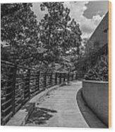 Walkway At Wharton Center Wood Print