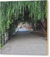 Walkway By The River Wood Print
