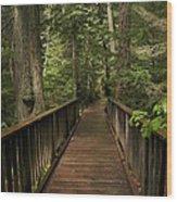 Walkway Into Paradise Wood Print
