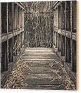 Walkway Out Wood Print