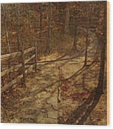 Walkway Through The Forest Wood Print