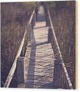 Walkway Through The Reeds Appalachian Trail Wood Print