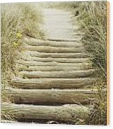 Walkway To Beach Wood Print