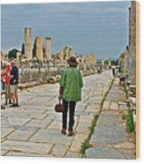 Walkway To Harbor In Ephesus-turkey Wood Print