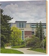 Walkway To Spartan Stadium Wood Print