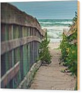 Walkway To The Beach Wood Print