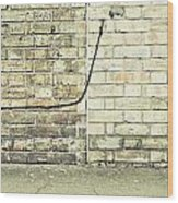 Wall And Wire Wood Print