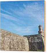 Wall Of Cartagena Colombia Wood Print
