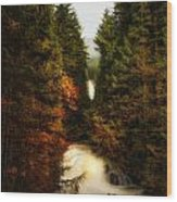 Wallace Fall North Fork Wood Print