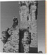 Wallace Monument Monochrome Wood Print