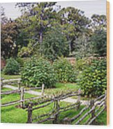 Walled Garden Wood Print