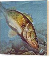 Walleye Ice Fishing Wood Print by Jon Q Wright