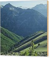 1m5903-wallowa Mountains And Valley Of The East Fork Wood Print