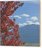 Dn5930-wallowa Valley In Fall Wood Print