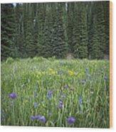 Wallowa Wildflowers Wood Print