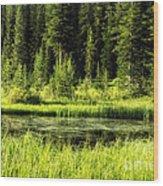 Wallowas - No. 9 Wood Print