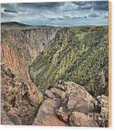Walls Of The Black Canyon Wood Print