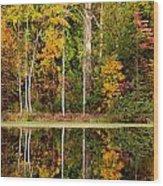 Walnut Creek Lake Autumn Reflection Wood Print