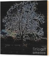 Walnut Tree Series Glowing Edges Wood Print