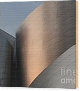 Walt Disney Concert Hall 15 Wood Print
