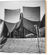 Walt Disney Concert Hall In Black And White Wood Print