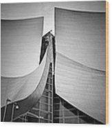 Walt Disney Concert Hall. Wood Print