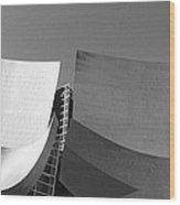 Walt Disney Concert Hall, Los Angeles Wood Print