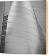Walt Disney Concert Hall Wood Print by Pro Shutterblade