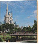 Walt Disney World Orlando Wood Print