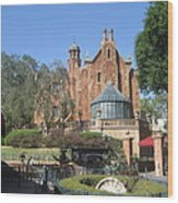 Walt Disney World Resort - Magic Kingdom - 1212141 Wood Print by DC Photographer