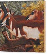 Wanta Race Wood Print