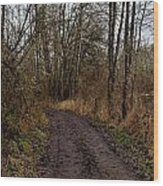 Wapato State Access Area Wood Print by Sara Edens