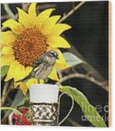 Sunflower And Warbler Bird Wood Print