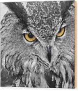 Watching You Owl Wood Print