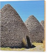 Ward Charcoal Ovens Wood Print