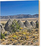Wards Charcoal Ovens View Wood Print