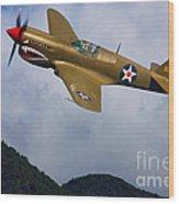 Warhawk Curtiss P-40  Wood Print