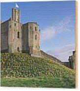 Warkworth Castle In Spring Wood Print