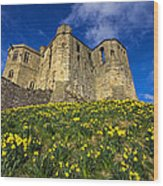 Warkworth Castle In Spring Wood Print