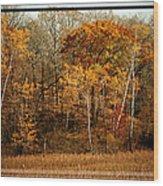 Warm Autumn Glow Wood Print
