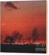 Warm January Sunset Wood Print