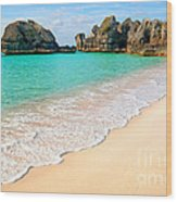 Warwick Long Bay Beach Wood Print