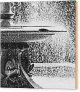 Wascana-156 Wood Print