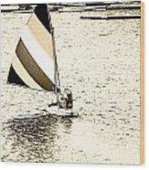 Wascana-26 Wood Print