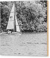 Wascana-61 Wood Print