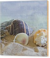 Washed Ashore Wood Print by Betty LaRue